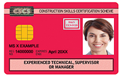 Red Experienced technician, supervisor or manager