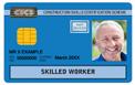Blue Skilled worker